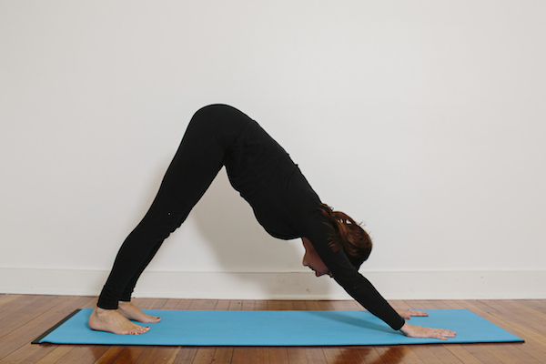 Hatha Yoga Basic Poses