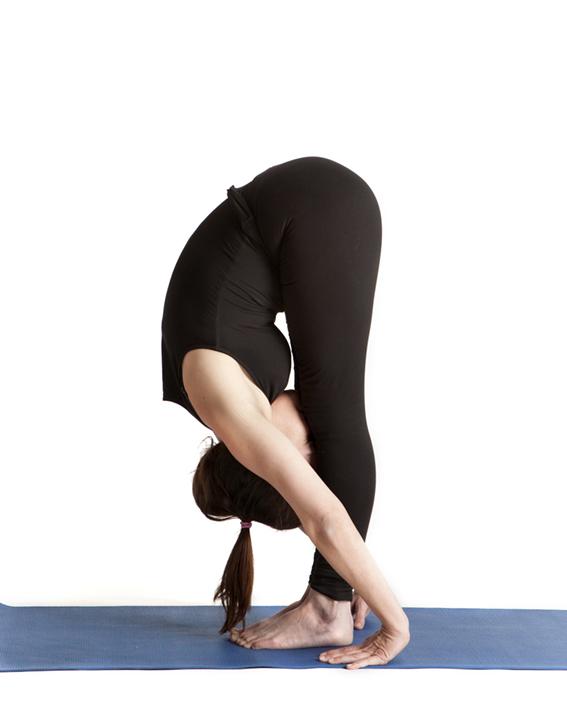 Uttanasana Or Standing Forward Bend