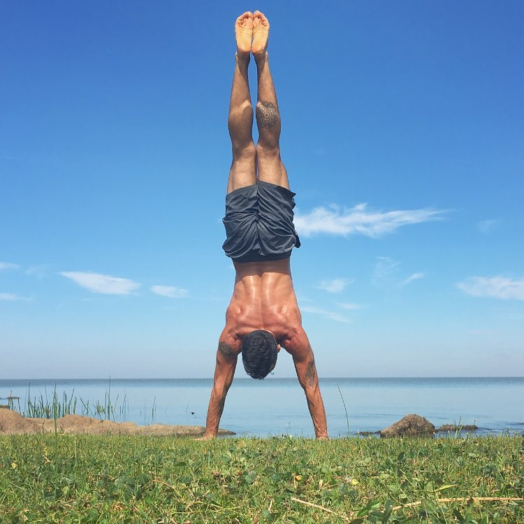 What does it mean by Adho Mukha Vrksasana (Handstand)