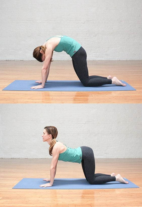 Method Of Doing The Marjariasana