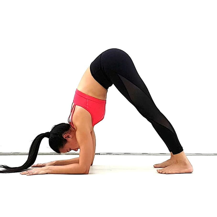 What Does It Mean By Ardha Pincha Mayurasana